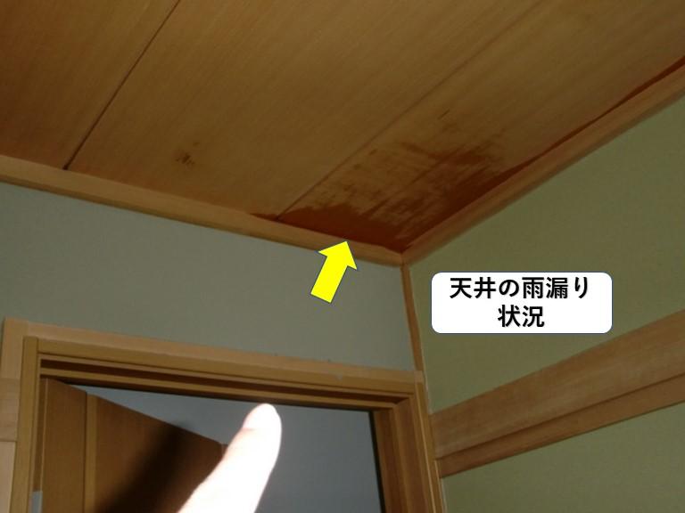 岸和田市の天井の雨漏り状況