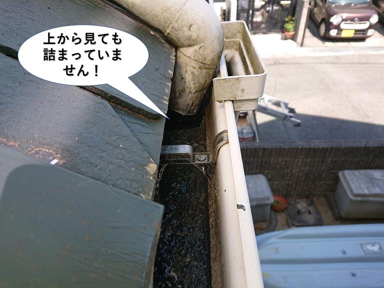 和泉市の雨樋を上から見ても詰まっていません