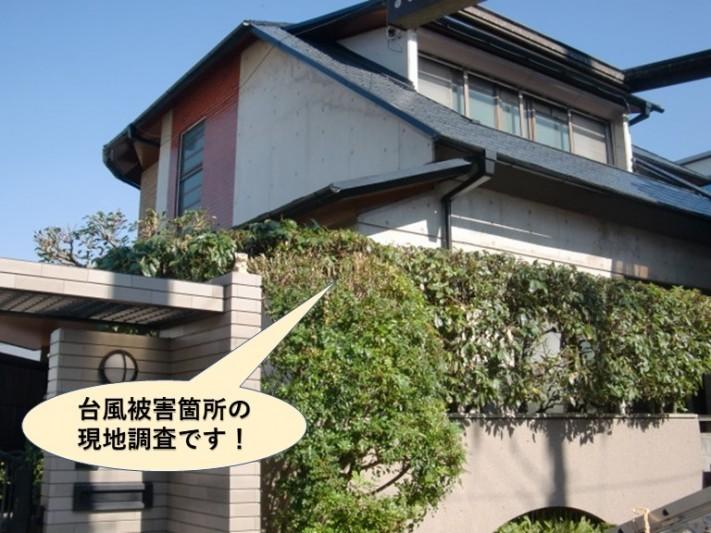 岸和田市の台風被害箇所の現地調査