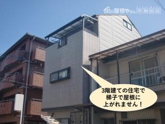 泉大津市の台風被害箇所の現地調査