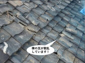 和泉市の棟の瓦が散乱しています