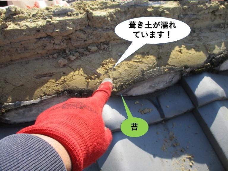 貝塚市の棟の苔が生えていた箇所の葺き土が濡れています