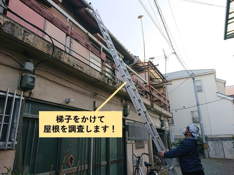 岸和田市で梯子をかけて屋根を調査します