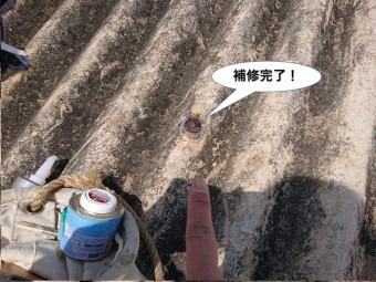 和泉市の倉庫の屋根の補修完了