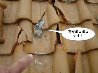和泉市の瓦がボロボロです
