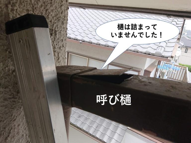 泉佐野市の呼び樋は詰まっていませんでした