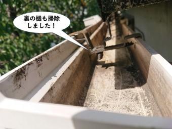 泉大津市の裏の樋も掃除しました