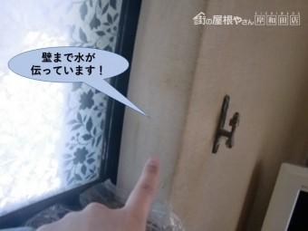熊取町の壁まで水が伝っています