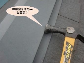 貝塚市の棟板金固定