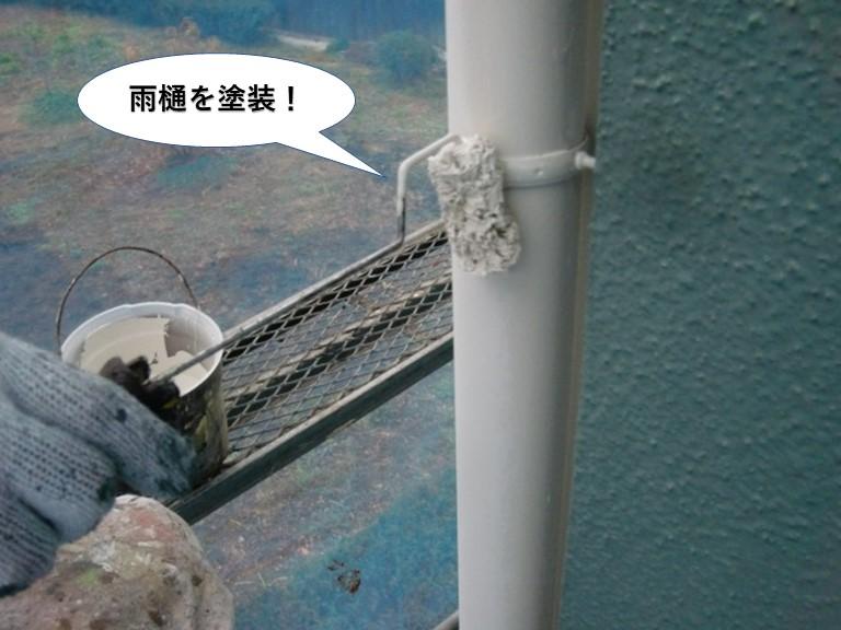 泉南市の雨樋を塗装