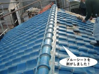 岸和田市の屋根のブルーシートを剥がしました