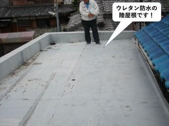 泉大津市のウレタン防水の陸屋根です