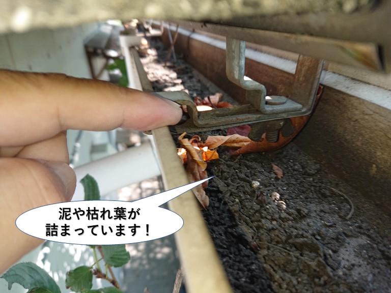 泉大津市の樋に泥や枯れ葉が詰まっています