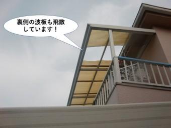 阪南市の裏の波板も飛散しています