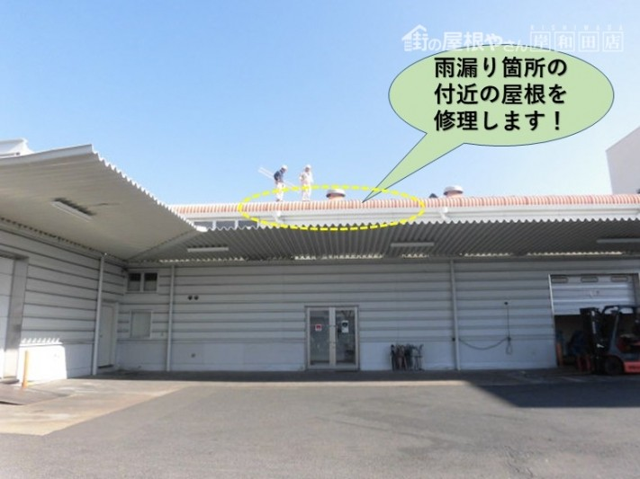 泉佐野市の工場の雨漏り箇所付近の屋根を修理します