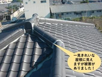 和泉市の屋根が一見きれいに見えますが被害がありました