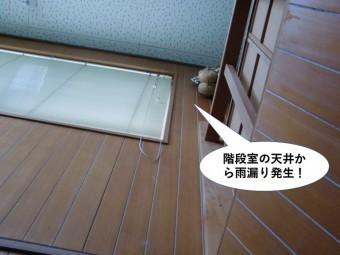 泉佐野市の階段室の天井から雨漏り発生