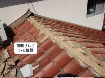 岸和田市の雨漏りしている屋根