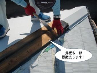 泉南市の棟の貫板も一部仮撤去します