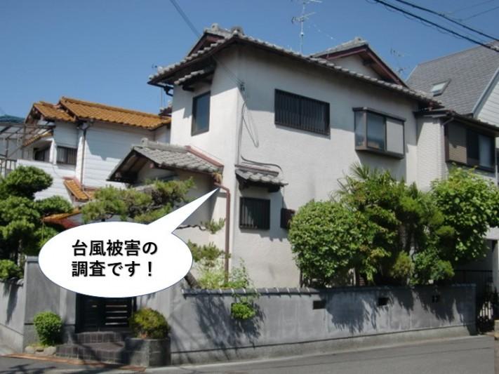 泉大津市の台風被害の調査です