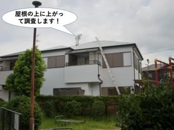 泉南市の屋根の上に上がって調査します