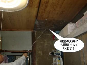 熊取町の和室の天井にも雨漏りしています