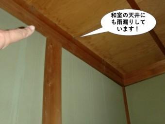 岸和田市の和室の天井にも雨漏りしています