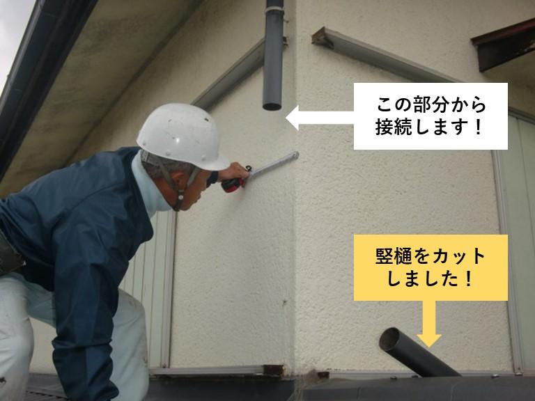 岸和田市の竪樋をカット
