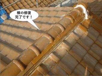 和泉市の棟の修復完了です