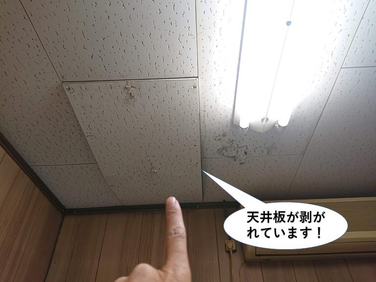 阪南市の天井板が剥がれています