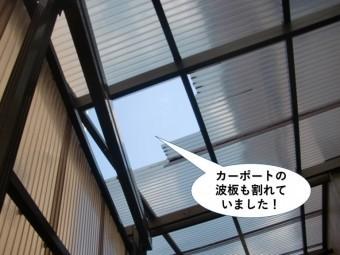 岸和田市のカーポートの波板も割れていました