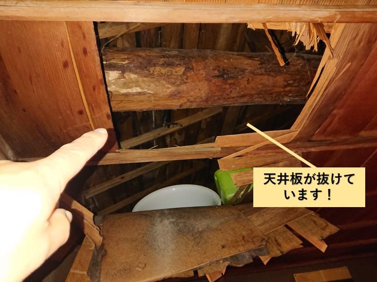 岸和田市の和室の天井板が抜けています