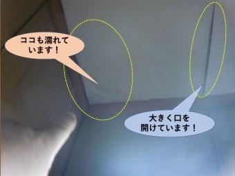 岸和田市のトイレの天井の雨漏り