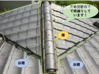 岸和田市の玄関屋根現況