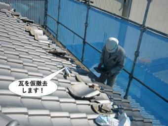 岸和田市の瓦を仮撤去します