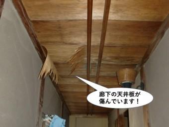 岸和田市の廊下の天井が傷んでいます