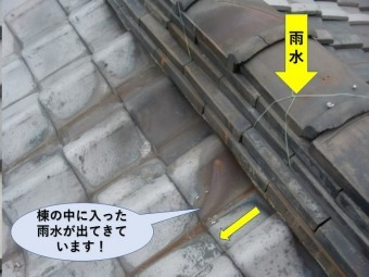 岸和田市の棟の中に入った雨水が出てきています