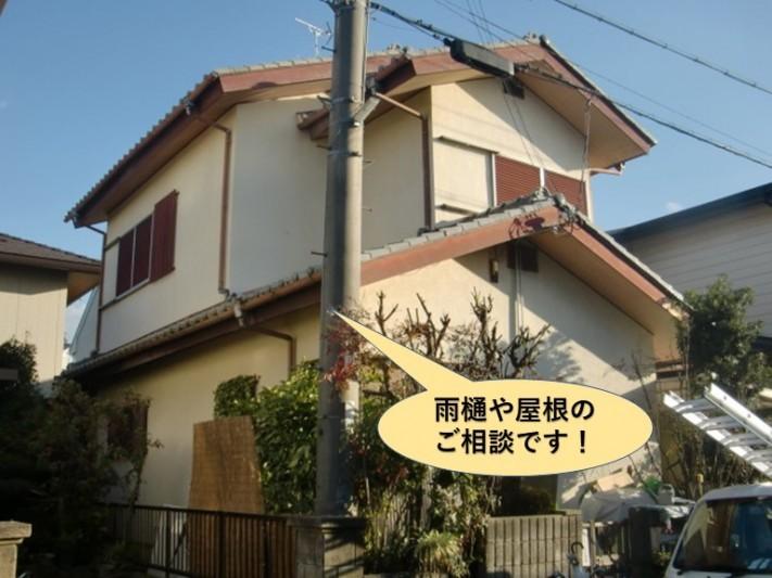 和泉市で屋根や雨樋のご相談