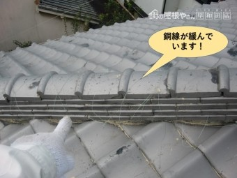 貝塚市の棟の銅線が緩んでいます!