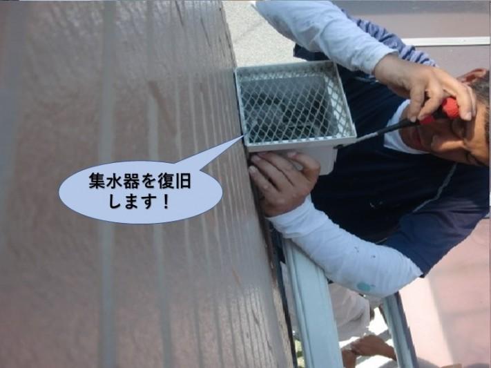 貝塚市のベランダの集水器を復旧します!