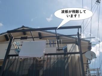 泉佐野市の波板が飛散しています