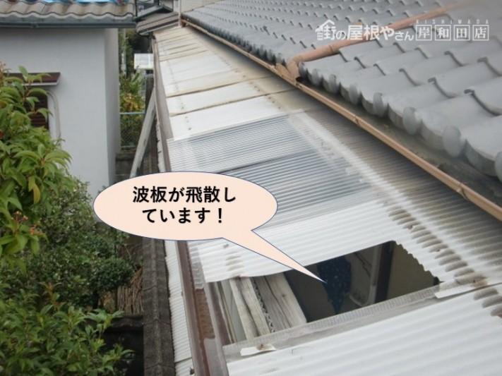 岸和田市の波板が飛散しています