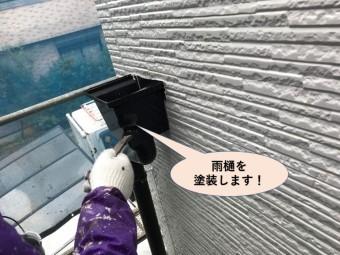 貝塚市の雨樋塗装
