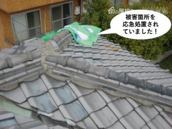 岸和田市の被害箇所を応急処置