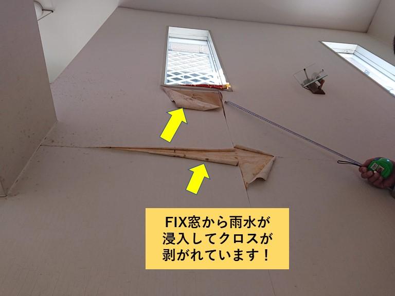 岸和田市のFIX窓から雨水が入ってクロスが剥がれています