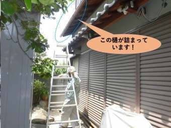 岸和田市の二階の屋根の雨樋が詰まっています