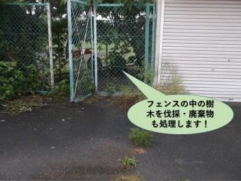 岸和田市のフェンスの中の樹木を伐採