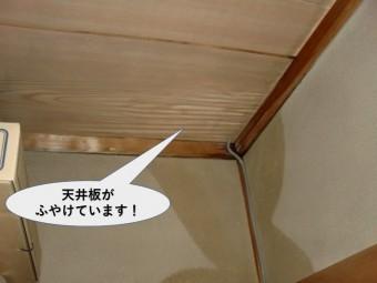 岸和田市の住宅の天井板がふやけています!