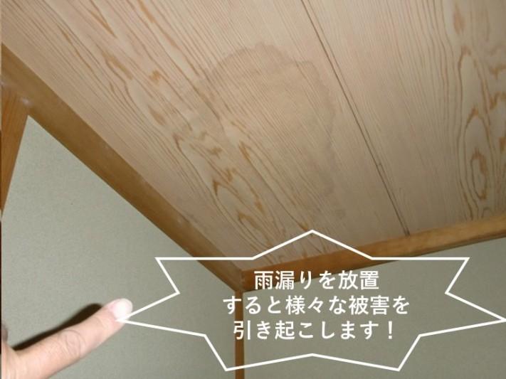 忠岡町の事例・雨漏りを放置すると様々な被害を引き起こします!