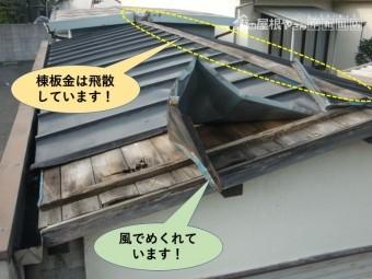 泉北郡忠岡町の台風の影響で屋根の板金が飛散